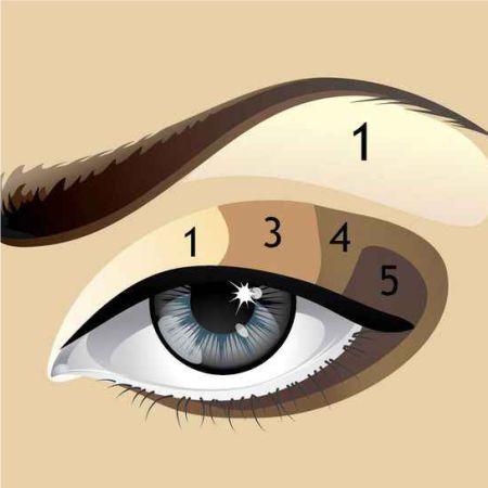 Классическая вертикальная техника макияжа глаз - схема