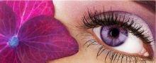 Makeup for Violet Eyes